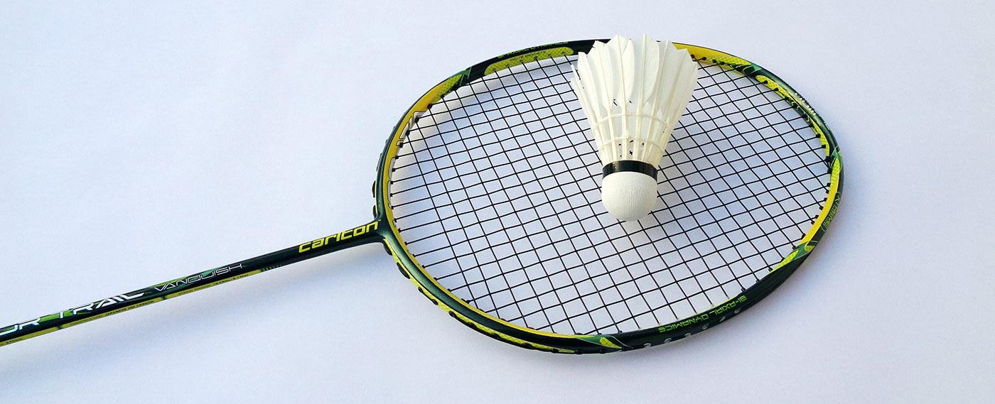 skv Mörfelden Badminton